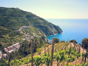 Hike from Riomaggiore to Manarola.